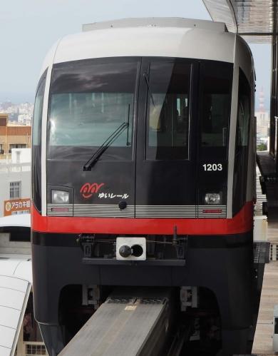 P1230745-3a