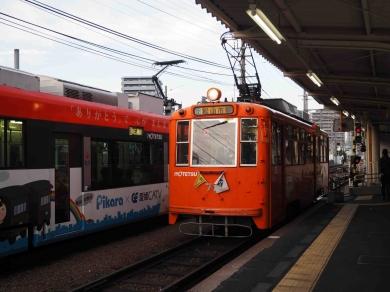 Pc100550-2a